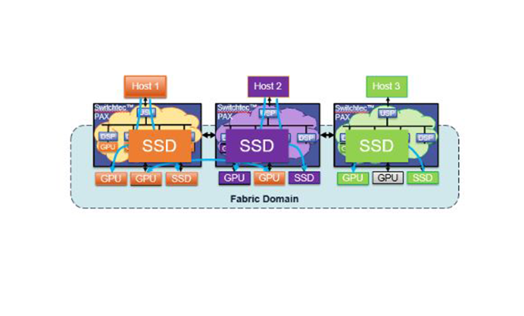 Fabric Domain Host and SSD
