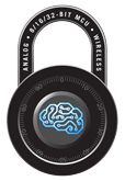 embeddedsecurity_lockbrainicon