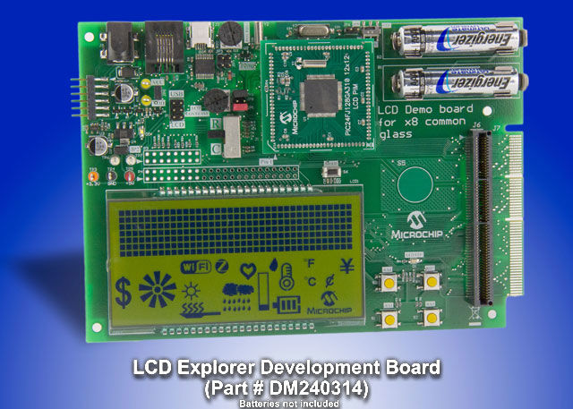 LCD Demo Board large