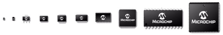 Microchip Packaging Specification Chips